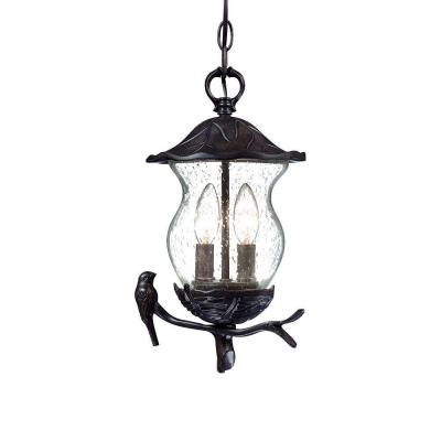 Acclaim Lighting Avian Collection Hanging Outdoor 2-Light Black Coral Light Fixture