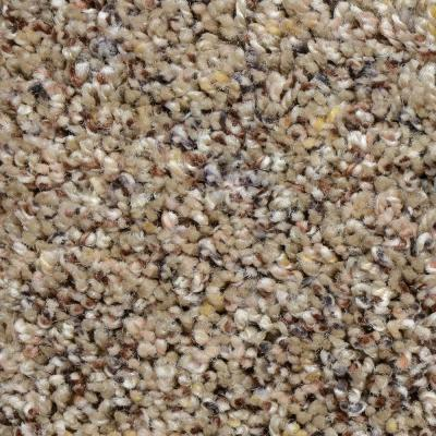 Powder Springs I - Color Meridian Twist 12 ft. Carpet Product Photo
