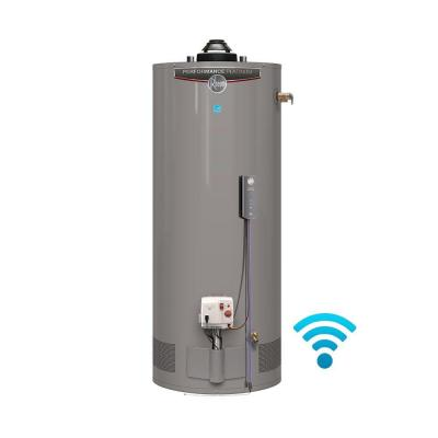 Performance Platinum 50 Gal. Short 12 Year 40,000 BTU Energy Star Natural Gas Water Heater Product Photo