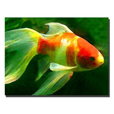 35 in. x 47 in. Goldfish Canvas Art
