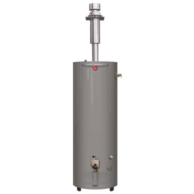 Performance 30 Gal. Tall 6 Year 30,000 BTU Direct Vent Manufactured Housing Convertible Natural Gas/LP Water Heater Product Photo