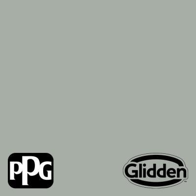 Light Drizzle PPG1033-4 Paint