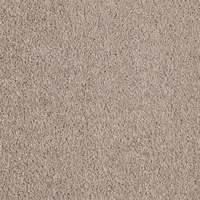 Lifeproof barons court i color uptown taupe 12 ft for Taupe color carpet