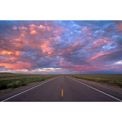 72 in. H x 48 in. W Highway Wall Mural