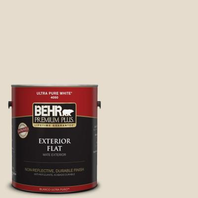Home Decorators Collection 1-gal. #HDC-CT-05 Pale Palomino Flat Exterior Paint