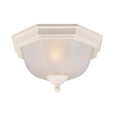 Acclaim Lighting Flushmount Collection Ceiling-Mount 2-Light Outdoor Textured White Light Fixture