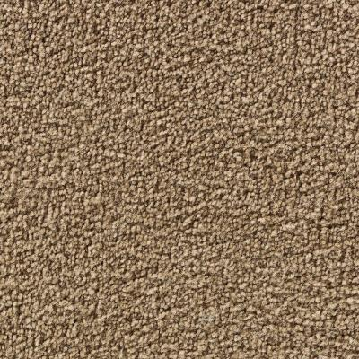 Martha Stewart Living Burghley Snail Shell - 6 in. x 9 in. Take Home Carpet Sample