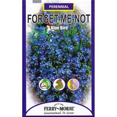 250 mg Blue Bird Forget-Me-Not Seed