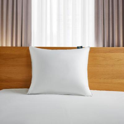 Serta 300 Thread Count Back Sleeper White Down Fiber Bed Pillow