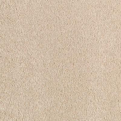 Stunning - Color Aztec 12 ft. Carpet Product Photo
