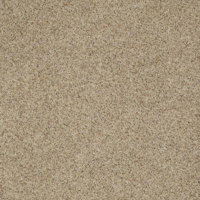 SoftSpring Impeccable II - Color East Coast 12 ft. Carpet