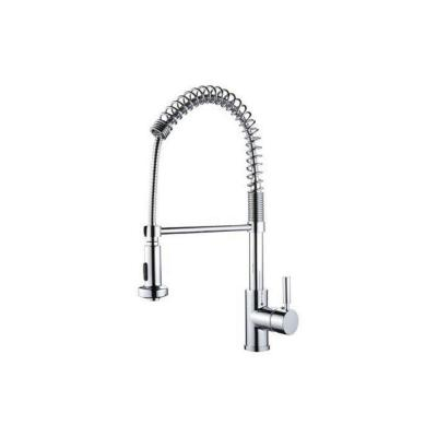 Y Decor Foreman Single-Handle Pull-Out Sprayer Kitchen Faucet in Polished Chrome