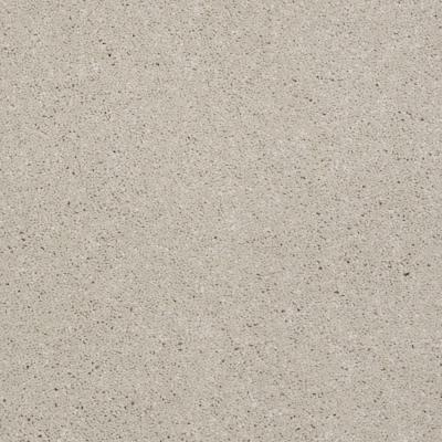 Martha Stewart Living Elmsworth - Color Talc 6 in. x 9 in. Take Home Carpet Sample