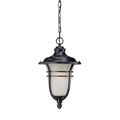 Acclaim Lighting Montclair Collection 1-Light Outdoor Matte Black Hanging Light