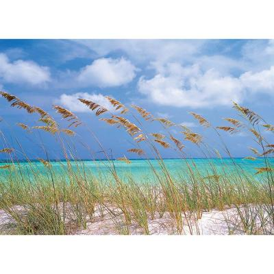 National Geographic 100 in. x 145 in. Ocean Breeze Wall Mural