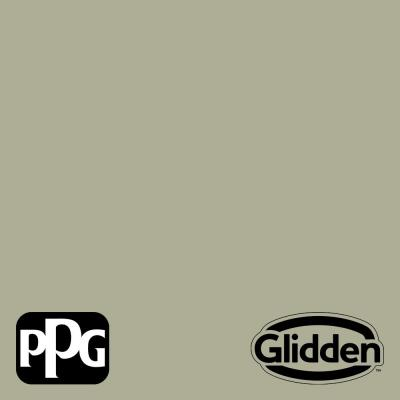 Photo Gray PPG1029-4 Paint