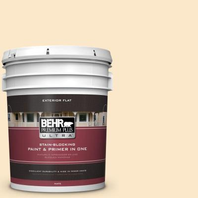 5-gal. #YL-W2 Spanish Lace Flat Exterior Paint