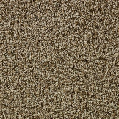 Bradon mill i t color taupe heather 12 ft carpet for Taupe color carpet