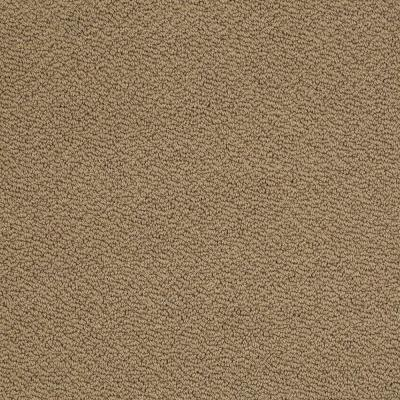 Ageless Beauty III - Color Fawn 12 ft. Carpet Product Photo