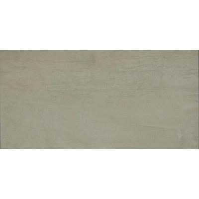 Lockport 12 in. x 24 in. Glazed Porcelain Floor and Wall