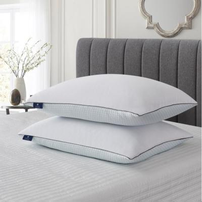 Summer and Winter Goose Feather Pillow (2-Pack)