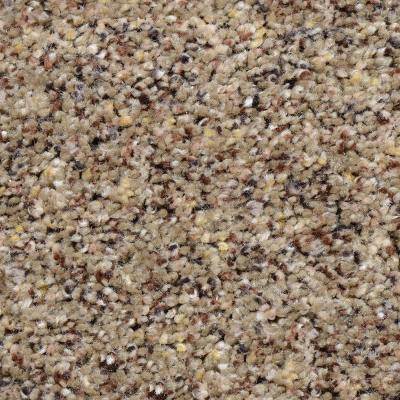 Beach Club I - Color Adair Texture 12 ft. Carpet Product Photo