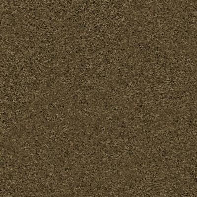 Mission Critical - Color Mountain Trail 12 ft. Carpet Product Photo