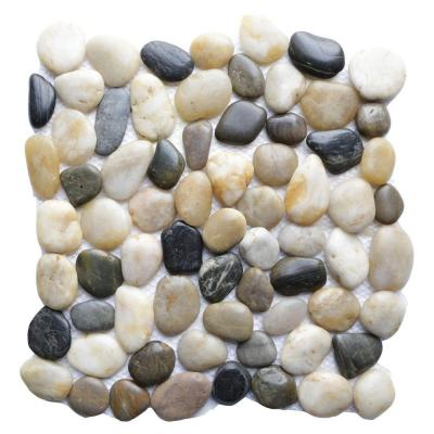 Multi 12 in. x 12 in. Natural Pebble Stone Floor and