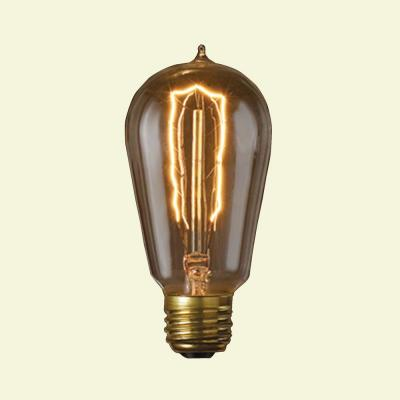 Bulbrite 40-Watt Incandescent S14 Vintage Style Light Bulb (5-Pack) -