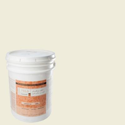 YOLO Colorhouse 5-gal. Imagine .04 Flat Interior Paint-DISCONTINUED