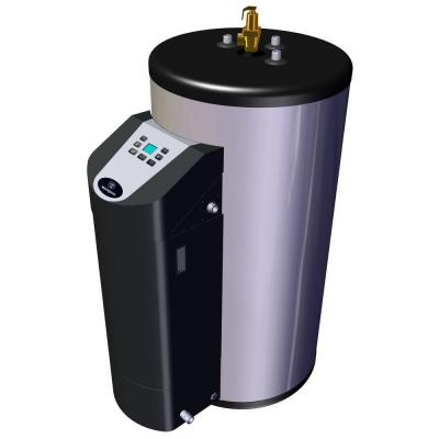 80 Gal. 10 Year 76,000 BTU Liquid Propane Gas Fired Water Heater Product Photo