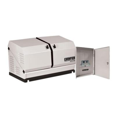 12,500-Watt Air Cooled Automatic Home Standby Generator with 100 Amp 14