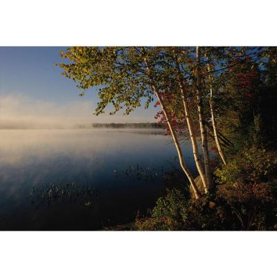 72 in. H x 48 in. W Lake Wall Mural Product Photo