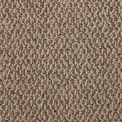 TrafficMASTER Critical Path - Color Tumbleweed Berber 12 ft. Carpet
