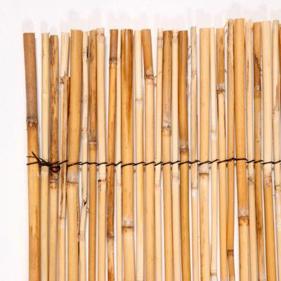 4 ft. x 8 ft. Natural Peeled and Polished Reed Fencing Product Photo