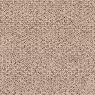 Softspring marvelous color tender taupe 12 ft carpet for Taupe color carpet