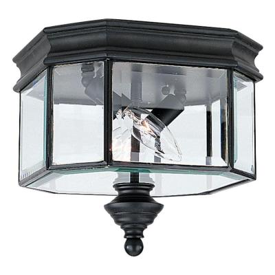 Sea Gull Lighting Hill Gate 2-Light Hanging/Ceiling Outdoor Black Pendant Fixture