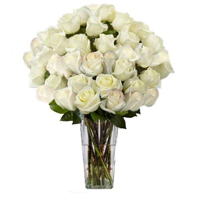 The Ultimate Bouquet Gorgeous White Rose Bouquet in Clear Vase (36 Stem) Overnight Shipping Included
