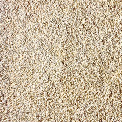 Luxe Opulent Texture 24 in. x 24 in. Residential Carpet Tile (5 Tiles/Case) Product Photo