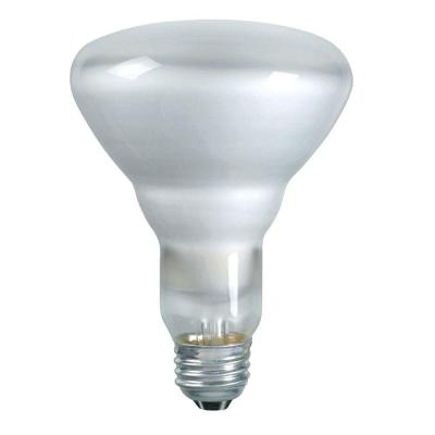DuraMax 65-Watt Incandescent BR30 Indoor Flood Light Bulb (12-Pack)