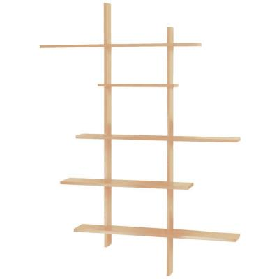 Home Decorators Collection 66 in. x 50 in. Deluxe Tall Display Shelf