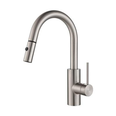 Mateo Single-Handle Pull-Down Sprayer Kitchen Faucet in Stainless ...