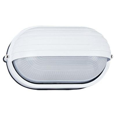 Sea Gull Lighting Riverside 1-Light Outdoor White Wall Wall/Ceiling Fixture
