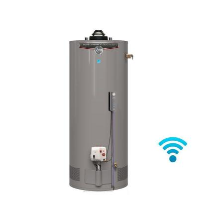 Performance Platinum 40 Gal. Short 12 Year 40,000 BTU Energy Star Natural Gas Water Heater Product Photo
