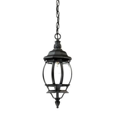 Acclaim Lighting Chateau Collection 1-Light Hanging Outdoor Matte Black Lantern
