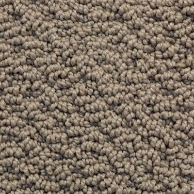 Softspring Memorable Ii Color Urban Taupe 12 Ft Carpet