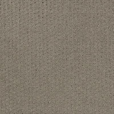 Lifeproof carpet sample sequin sash color shadow taupe for Taupe color carpet