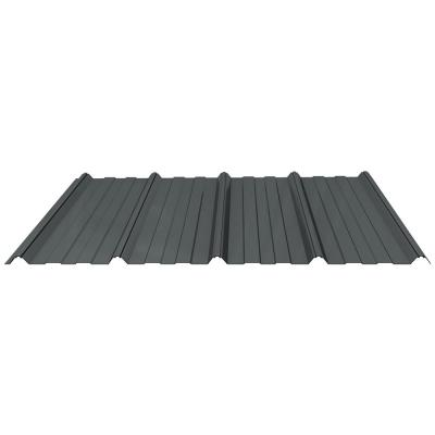 Shelterguard 12 ft. Exposed Fastener Steel Roof Panel in Charcoal Gray