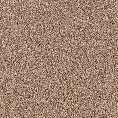 Platinum plus country club ii f color taupe treasure 12 for Taupe color carpet