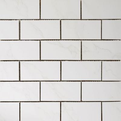 Paladino Albanella 12 in. x 12 in. x 9 mm Porcelain